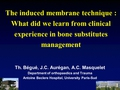 The Induced Membrane Technique. What did we learn from clinical experience in bone substitutes management
