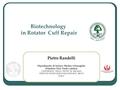 Biotechnology in rotator cuff repair