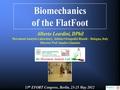 Biomechanics of the flat foot