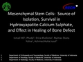 Mesenchymal stem cells accelerate healing of bone defect in rabbits and their potential source of isolation