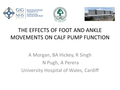 The effects of foot and ankle movements on calf pump function