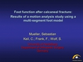 Foot function after calcaneal fracture: A motion analysis study using a multi-segment foot model
