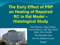 The early effect of platelet-rich plasma on healing of repaired rotator cuff in a rat model. Histological study