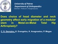 Does choice of head diameter and neck geometry affect early migration of a modular stem in Metal-on-Metal total hip arthroplasty?
