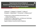 Experimental animal model of alcohol-induced osteonecrosis of femoral head by chronic ethanol consumption