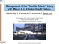 Management of the « terrible triade » injury with Mason 3 or 4 radial head fracture