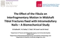 The effect of the fibula on interfragmentary motion in Midshaft Tibial fractures fixed with intramedullary nails - a biomechanical Study