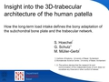 Insight Into The 3D-Trabecular Architecture Of The Human Patella