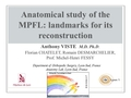 Anatomical Study Of The MPFL: Landmarks For Its Reconstruction