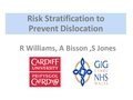 Prevention Of Dislocation In Very High Risk Patients Undergoing Primary Hip Arthroplasty