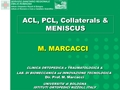 ACL, PCL, Collaterals & Meniscus