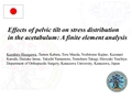 Effects Of Pelvic Tilt On Stress Distribution In The Acetabulum: A Finite Element Analysis