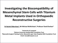Investigating The Biocompatibility Of Mesenchymal Stem Cells With Titanium Metal Implants Used In Orthopaedic Reconstructive Surgeries
