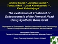 The Evaluation Of Treatment Of Osteonecrosis Of The Femoral Head Using Synthetic Bone Graft