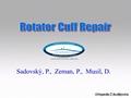 Pathomechanics, Classification, Clinical Picture, Imaging Of Massive Rotator Cuff Tears