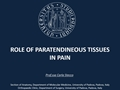 Role Of The Paratendinous Tissues In Pain