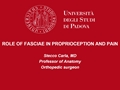 Role Of Fasciae In The Proprioception And Pain