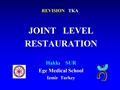 Restauration Of The Joint Level