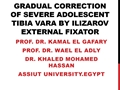 Gradual Correction Of Severe Adolescent Tibia Vara By Ilizarov External Fixator