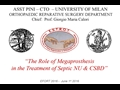 The Role Of Megaprosthesis In The Treatment Of Septic Non-Unions And Critical Size Bone Defects To Maintain Activity Through Life