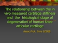 The Relationship Between The In Vivo Measured Stiffness And The Histological Stage Of Degeneration Of Human Knee Articular Cartilage