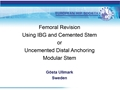 Femoral Revision Using IBG And Cemented Stem Or Uncemented Distal Anchoring Modular Stem