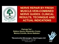 Nerve Repair By Fresh Muscle-Vein-Combined Nerve Guides: Clinical Results, Technique And Actual Indications