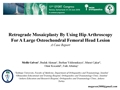 Retrograde Mosaicplasty By Using Hip Arthroscopy For A Large Osteochondral Lesion Of The Femoral Head: A Case Report