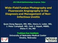 Wide-Field Fundus Photography and Flurescein Angiography in the Diagnosis and Management of Non-Infectious Uveitis